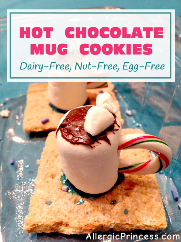 HOT CHOCOLATE MUG COOKIES | DAIRY FREE | NUT FREE | EGG FREE