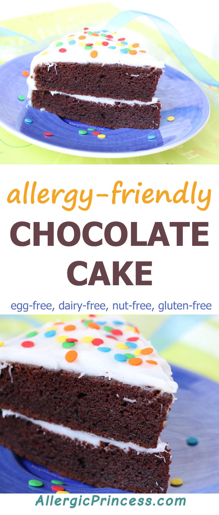 Whether it's time for a smash cake or a birthday cake for any age, this egg-free dairy-free nut-free gluten-free CHOCOLATE CAKE is sure to hit the spot.