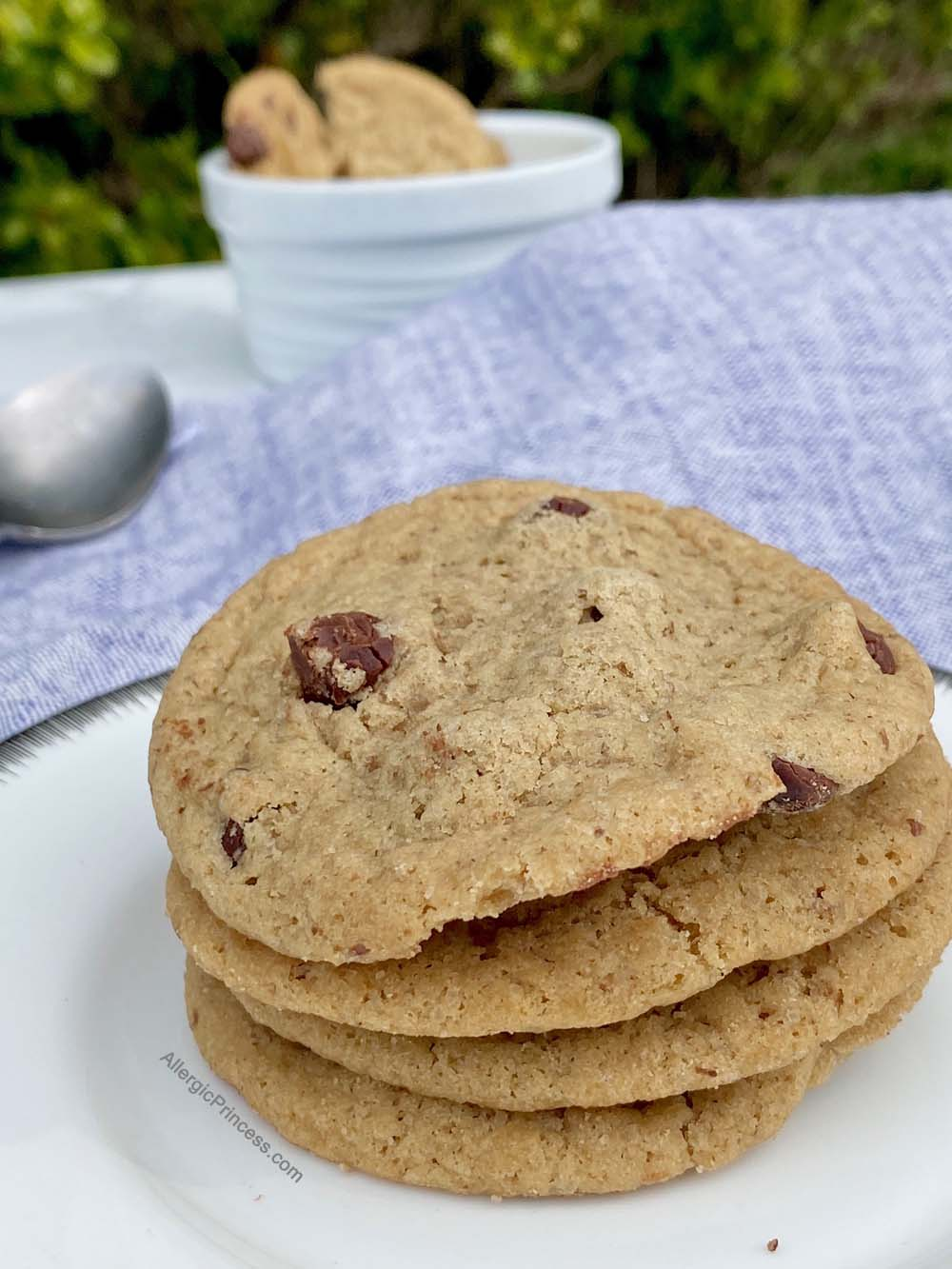 organic bread of heaven vegan chocolate chip cookies